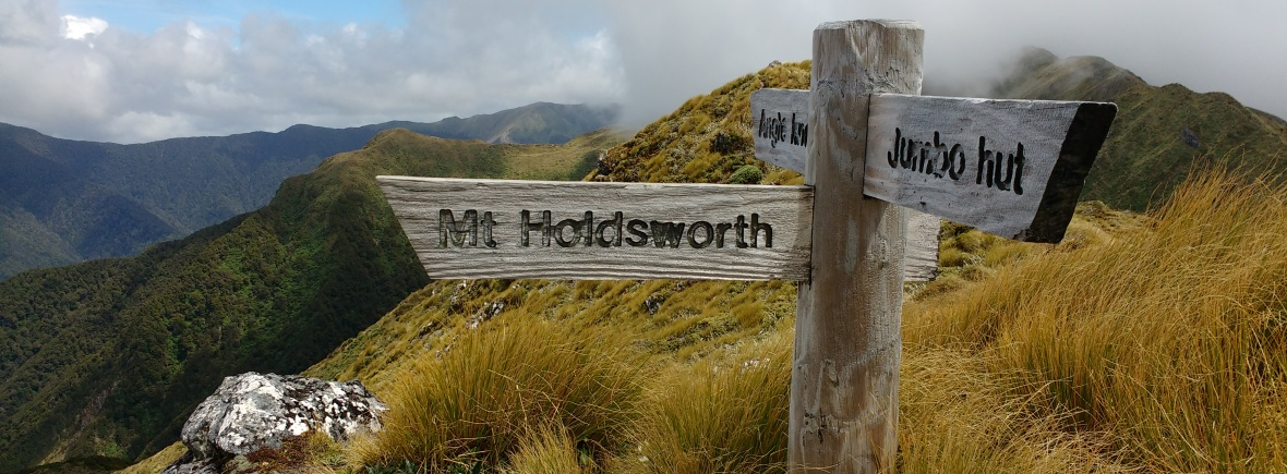Jumbo-Holdsworth Loop – runwellington