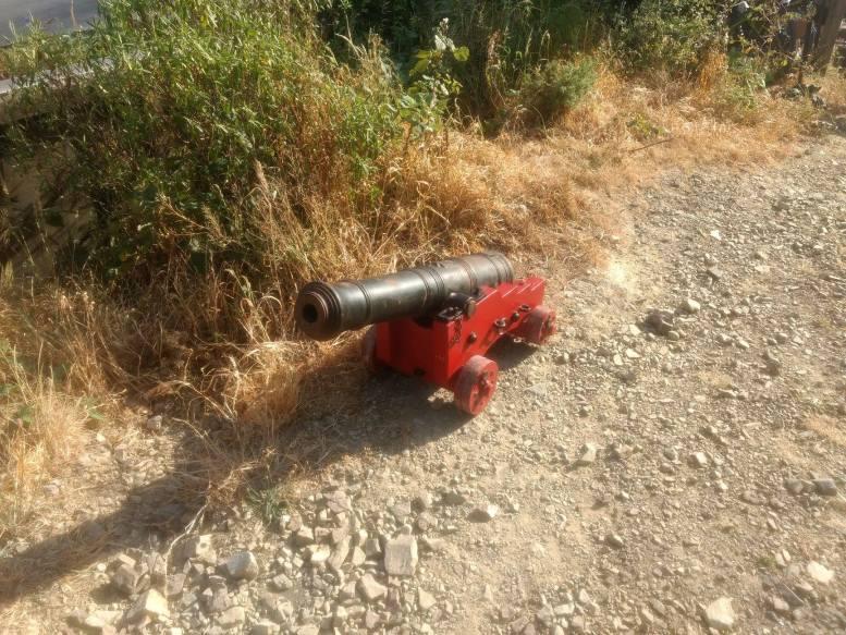 Tip Track Marathon Cannon